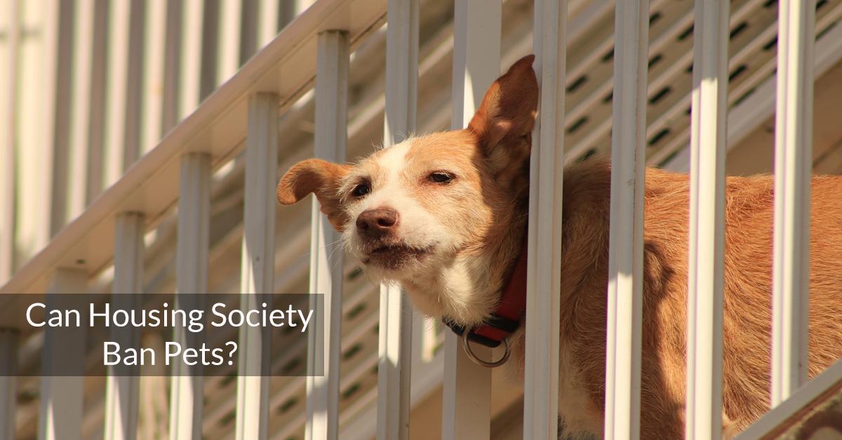 Can Housing Society ban pets